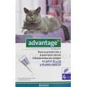 Advantage Gatos 80 4 Pipetas desparasitar gatos