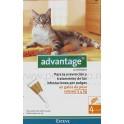 Advantage Gatos 40 4 Pipetas desparasitar gatos
