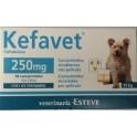 KEFAVET 250 mg 14 Comprimidos antibioticos para perros