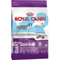 Royal Canin Junior Giant Dog 15 kg pienso para perros