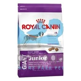 royal canin junior giant dog 15 kg pienso para perros. Black Bedroom Furniture Sets. Home Design Ideas