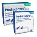 PREDNICORTONE 30 Comprimidos para Perros y Gatos Prednisolona Oral