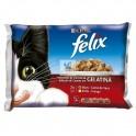 FELIX GH CARNE SOBRES 10 x 4 x 100 g Comida para Gatos