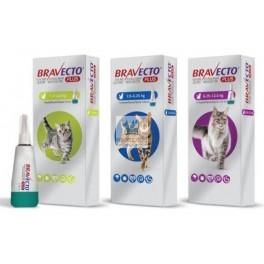 BRAVECTO PLUS GATOS 1 Comprimido Antiparasitario para Gatos