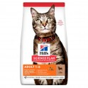 Hills Feline ADULT CORDERO Comida para Gatos