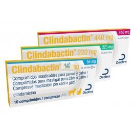 CLINDABACTIN 10 Comprimidos Antibiotico para Perros y Gatos