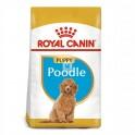 Royal Canin Poodle Puppy 3 Kg Pienso para Perros