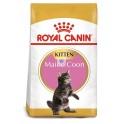 Royal Canin Maine Coon Kitten 10 kg comida para gatos