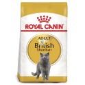Royal Canin British Shorthair 10 kg comida para gatos