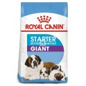 Royal Canin Giant Starter 15 Kg Cachorros y Madres Lactantes Pienso para Perros