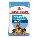 Royal Canin Maxi Starter 15 Kg Cachorros y Madres Pienso para Perros
