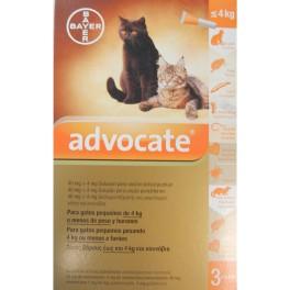ADVOCATE Pipetas desparasitar gatos y hurones 0-4 Kg