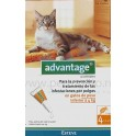 Advantage Gatos 40 4 Pipetas desparasitar gatos