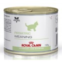 Royal Canin Pediatric Weaning 12x195 gr comida para gatos