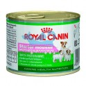 Royal Canin Mini Starter MOUSSE 12x195 gr pienso para perros