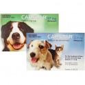 CAPSTAR 11 - 6 Pastillas desparasitar Perros y Gatos