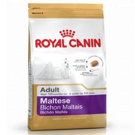 Royal Canin Bichón Maltés Adult 1.5 Kg Pienso para Perros