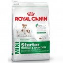 Royal Canin Mini Starter Pienso para Perros
