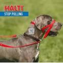 HALTI® HEADCOLLAR NEGRO Collares para Perros