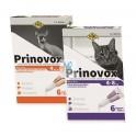 PRINOVOX GATO 6 pipetas Antiparasitario para Gatos