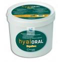 HYALORAL EQUINO 840 g Protector articular para caballos