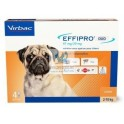 EFFIPRO DUO SPOT ON PERRO 4 PIPETAS Antiparasitario Externo
