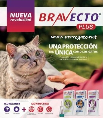 BRAVECTO PLUS GATOS ® Pipetas para Gatos