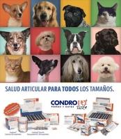 CONDROVET - SALUD ARTICULAR PARA PERROS Y GATOS