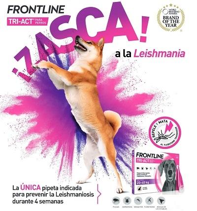 FRONTLINE TRI-ACT ® ANTIPARASITARIO EXTERNO PARA PERROS