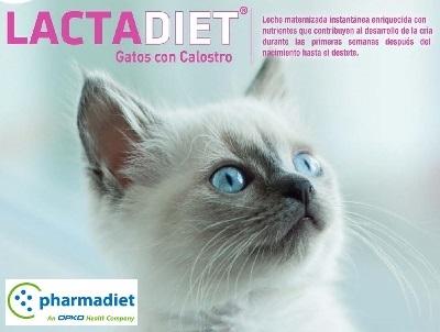 LACTADIET ® LECHE DE GATOS CON CALOSTRO