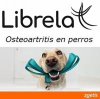 LIBRELA ® ZOETIS, AVANZA EN TRATAMIENTO DE OSTEOARTRITIS EN PERROS