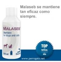 MALASEB ®, DERMATIRIS POR MALASSEZIA