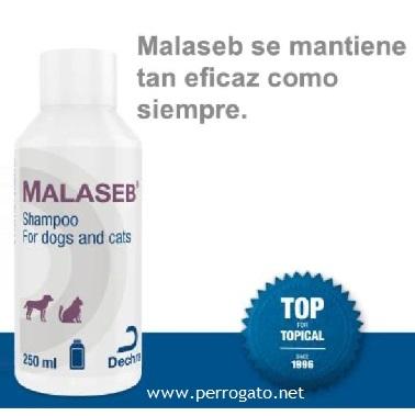 MALASEB ®, DERMATITIS POR MALASSEZIA