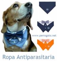PRENDAS ANTIPARASITARIAS PARA PERROS