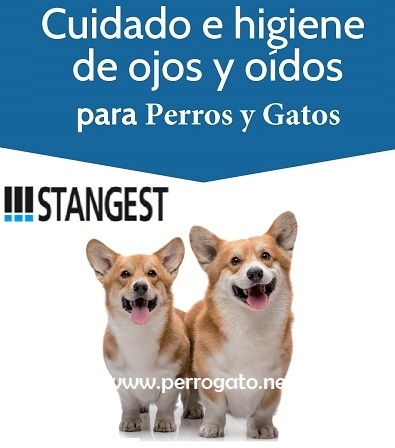STANGEST - OJOS Y OIDOS