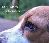 TRATAMIENTOS OCULARES CORRECTOS